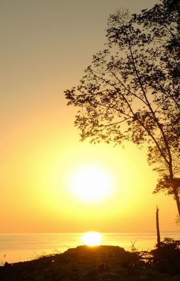 Amazing sunset and silhouette of people at Telok Warisan Beach, Batu Pahat, Johore, Malaysia. Picnic Silhouette Sunlight Travel Wall Paper Arts Culture And Entertainment Bilboard Calendar Calendars Casa Nayafan Childresns Lo Collection Fisherman Fuji Landscape People Playing Seascape Sunset
