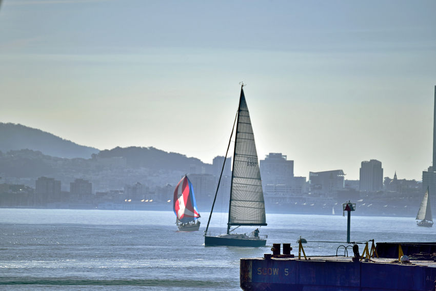 Sailing At Middle Harbor 9 Port Of Oakland, Ca Middle Harbor Sailing Sailboats Cityscape San Francisco Skyline Waterfront♥ Hills Of San Francisco San Francisco Bay The Color Of Sport Open Sails Sailing The Bay People On Board Enjoying Life Leisure Activity Channel Marker Dredging Platform Harbor Landscape_Collection Landscape Photography Bayview Office Buildings Marina Urban Skyline Architecture