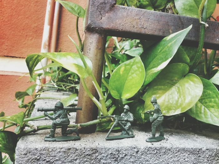 Toysoldier Toysoldiers Childrentoy Green Students