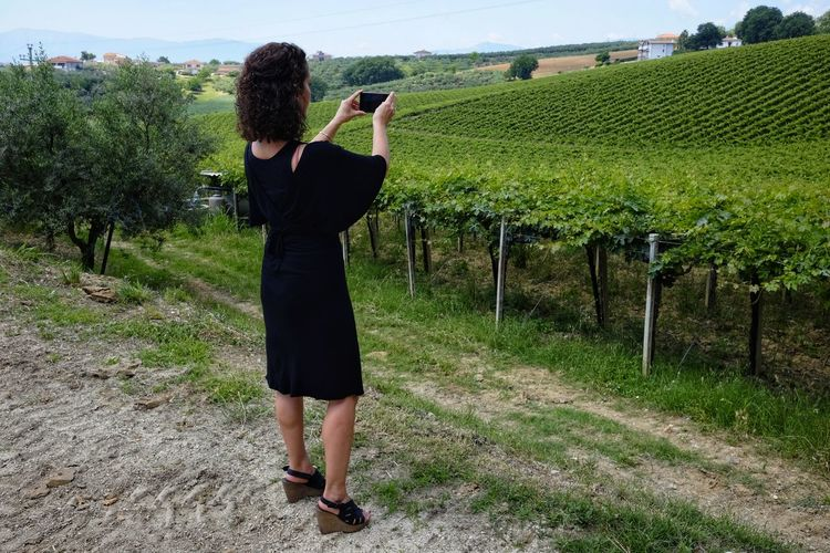 woman photographs vineyard Adult Day Environment Field Full Length Growth Hairstyle Land Landscape Leisure Activity Lifestyles Nature One Person Outdoors Photographer Photographing Plant Real People Rural Scene Smartphonephotography Standing Vineyard Winemaking Women