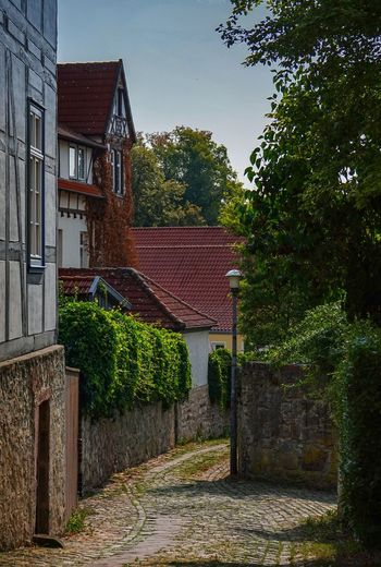 Gasse Architecture Building Building Exterior Built Structure City Day Direction Footpath Growth House Nature No People Outdoors Plant Residential District Roof Roof Tile Sky The Way Forward Tree Wall Warburg Altstadt