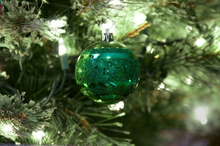 Bright Lights Winter Time Holiday Celebrations Christmas Green Bulb Christmas Celebration Christmas Tree Christmas Decoration Decoration Christmas Ornament Sphere Hanging Shiny Christmas Lights Holiday No People Tradition Tree Indoors