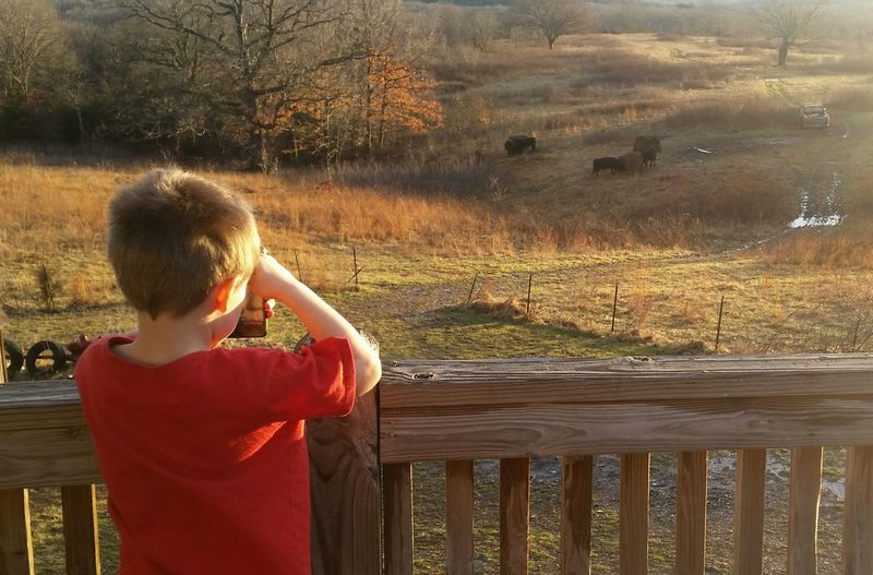 Rear view of boy photographing field