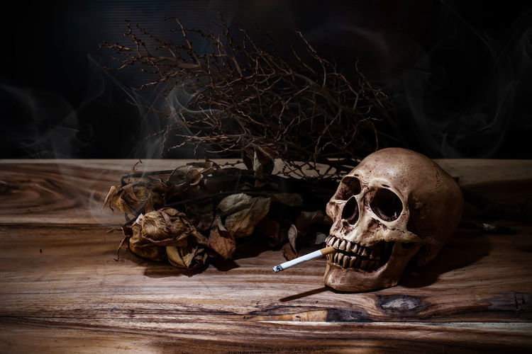 Human Skull With Cigarette By Dried Plant On Wooden Table