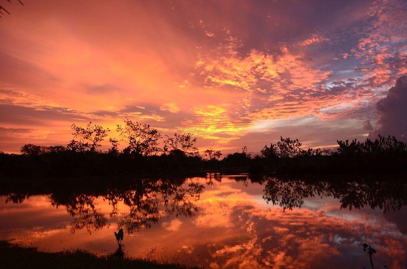Borneo Borneo Sunset First Eyeem Photo