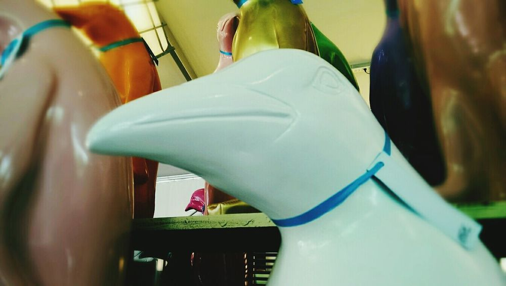 Weird Dangerously Sexy Socially Awkward Penguin @ Ibiza