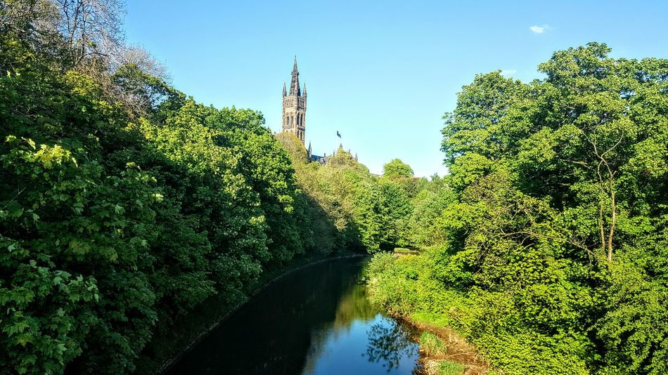 Glasgow university in the distance Kelvingrovepark Kelvingrove Park Glasgow  Parklife Glasgow University Tree Green Color Growth Outdoors No People Water Plant Beauty In Nature Nature Freshness Sky Day Today's Hot Look Mobilephotography Samsumggalaxy6edgeplus EyeEm Best Shots My Country In A Photo The Week On Eyem Mycitymyhome Eyemphotography The Great Outdoors - 2017 EyeEm Awards Neighborhood Map The Street Photographer - 2017 EyeEm Awards