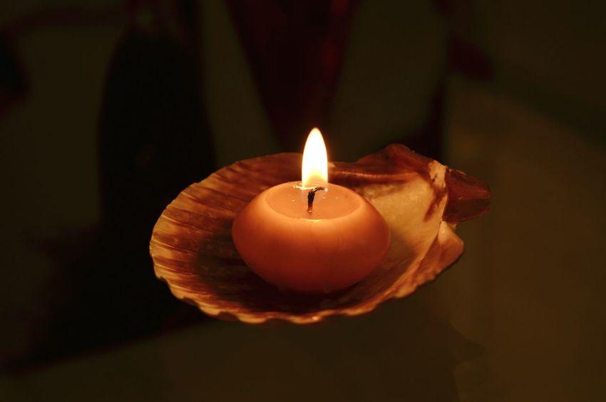 Diya Fire Seashells Flame Getting Creative Beautiful Devine Diwali2014 India
