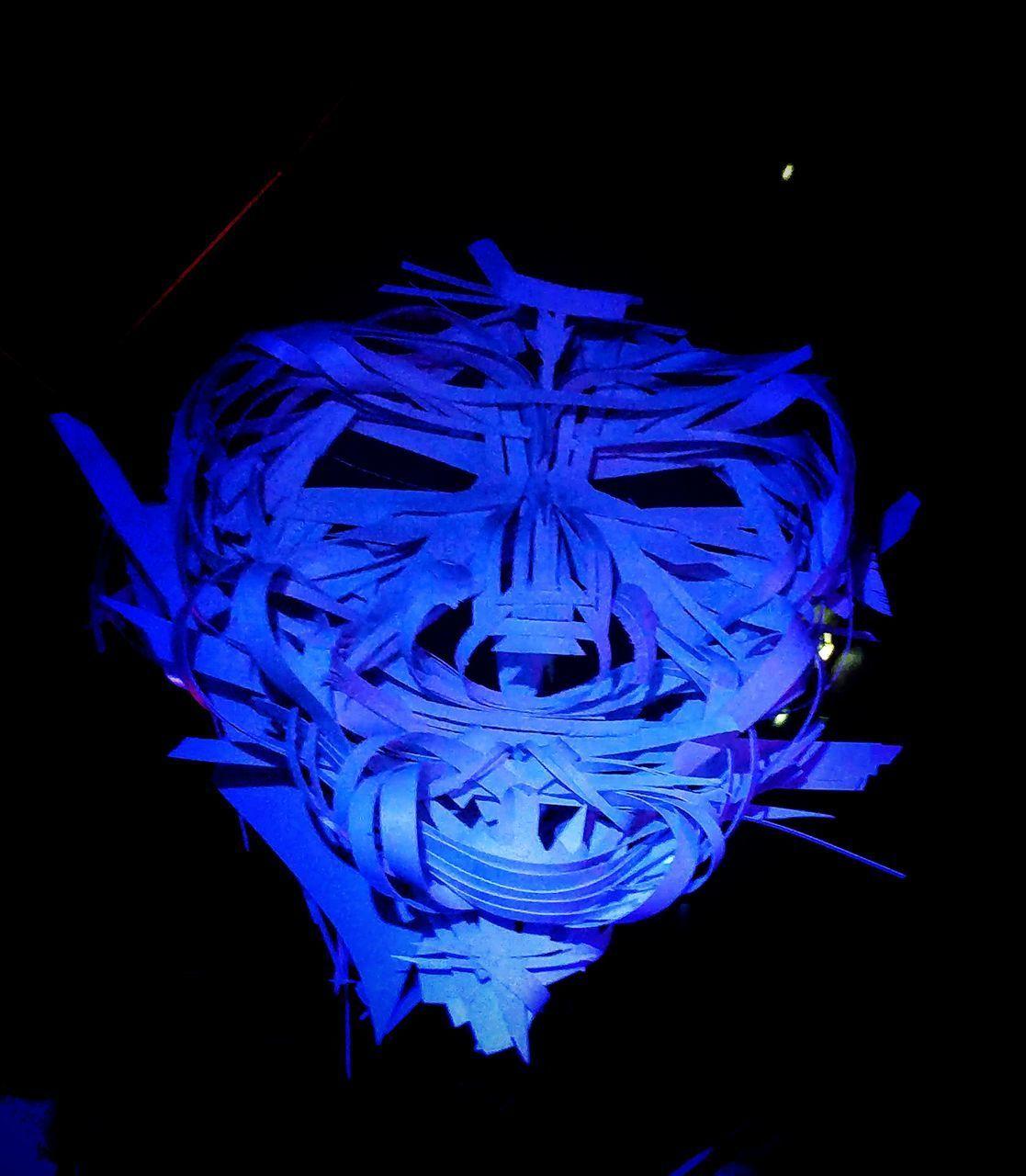 blue, studio shot, close-up, black background, indoors, petal, fragility, flower, vulnerability, inflorescence, flower head, flowering plant, night, plant, no people, beauty in nature, nature, creativity, illuminated, freshness, purple