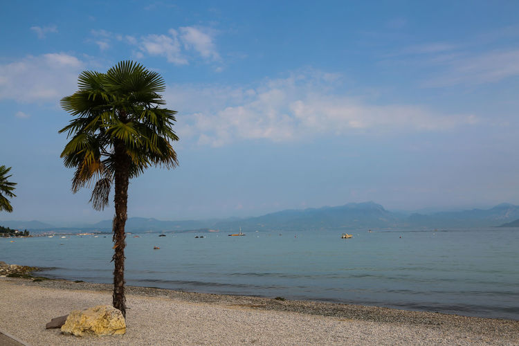 Lake Garda Beach Beauty In Nature Cloud - Sky Coconut Palm Tree Day Growth Land Nature No People Outdoors Palm Tree Plant Scenics - Nature Sea Sky Tranquil Scene Tranquility Tree Tropical Climate Tropical Tree Water