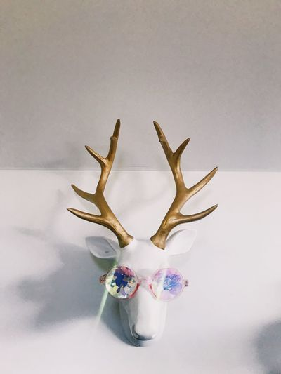 Deer on the wall Love Funny Glasses Animal Bust Deerhead Deer White Background Day