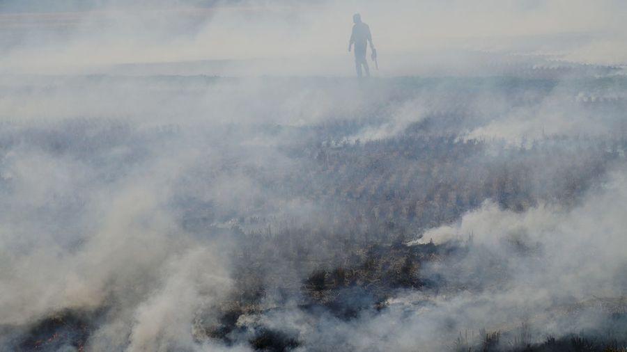 Smoke emitting from paddy field