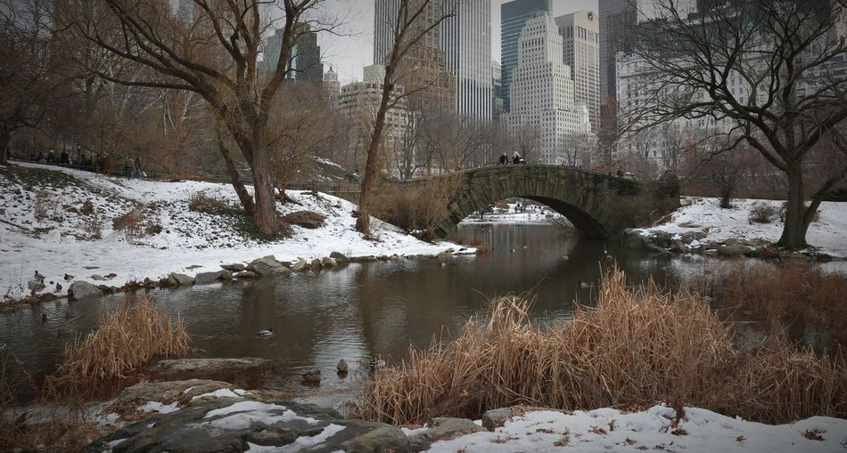 Snow covered river in city