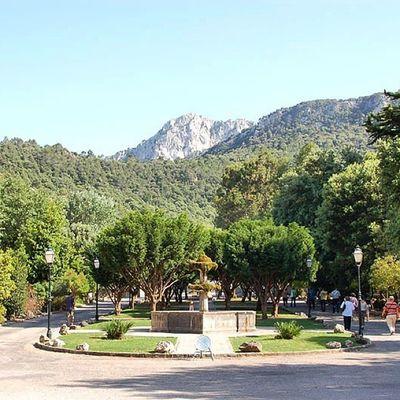 Lluç auf Mallorca