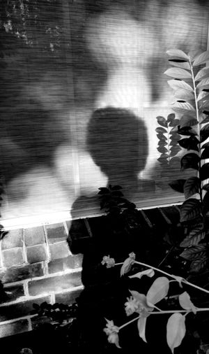 Myshadow Shilloueteofaphotographer Shapes And Textures Diluted Blackandwhite Photography Lost In The Landscape Art Photography Fantasy Photography Shapes And Forms Invisiblephotographer Invisible People