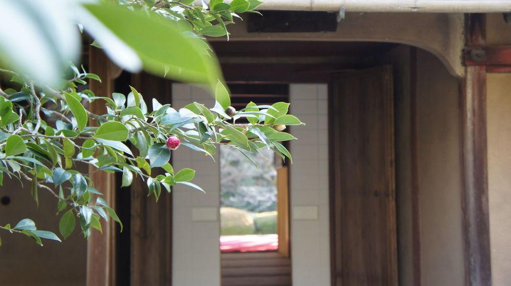 Kyoto Winter 詩仙堂