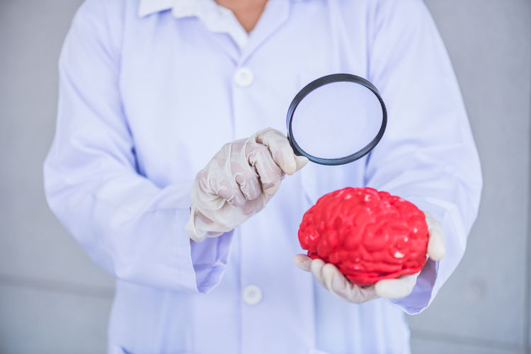 Midsection Of Scientist Analyzing Artificial Brain With Magnifying Glass In Laboratory