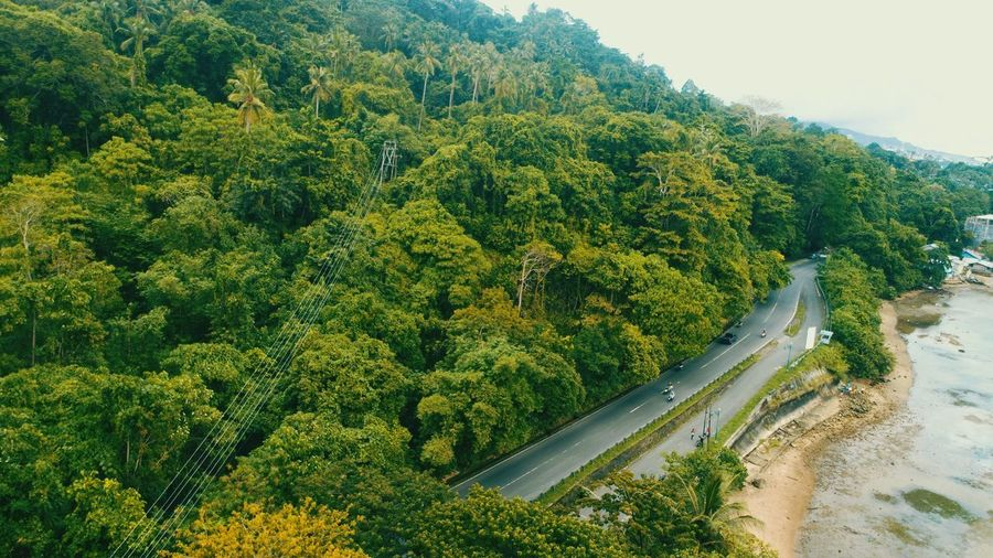 High angle view of road amidst trees in forest against sky