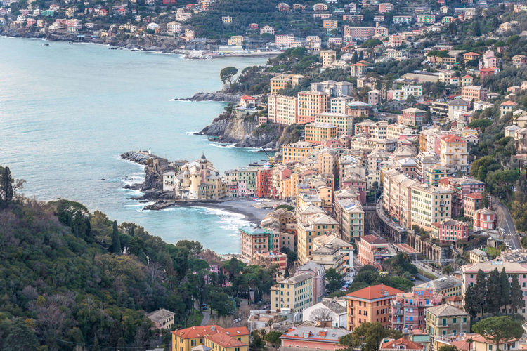 Camogli view from San Rocco, Genoa Province, Italy Camogli Camogli Italia Genoa Genova View Aerial View Architecture Building Exterior Built Structure Cityscape Day High Angle High Angle View Italy Landscape Liguria Nature Outdoors Residential  Residential Building Sea Sky Tree View From Above Water