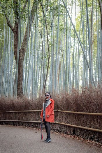 Bamboo forest with girl Holiday Thai Girl Asian Girl Bamboo Forest Japan Photography Travel