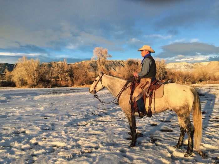 Senior Cowboy Riding Horse On Snow Field