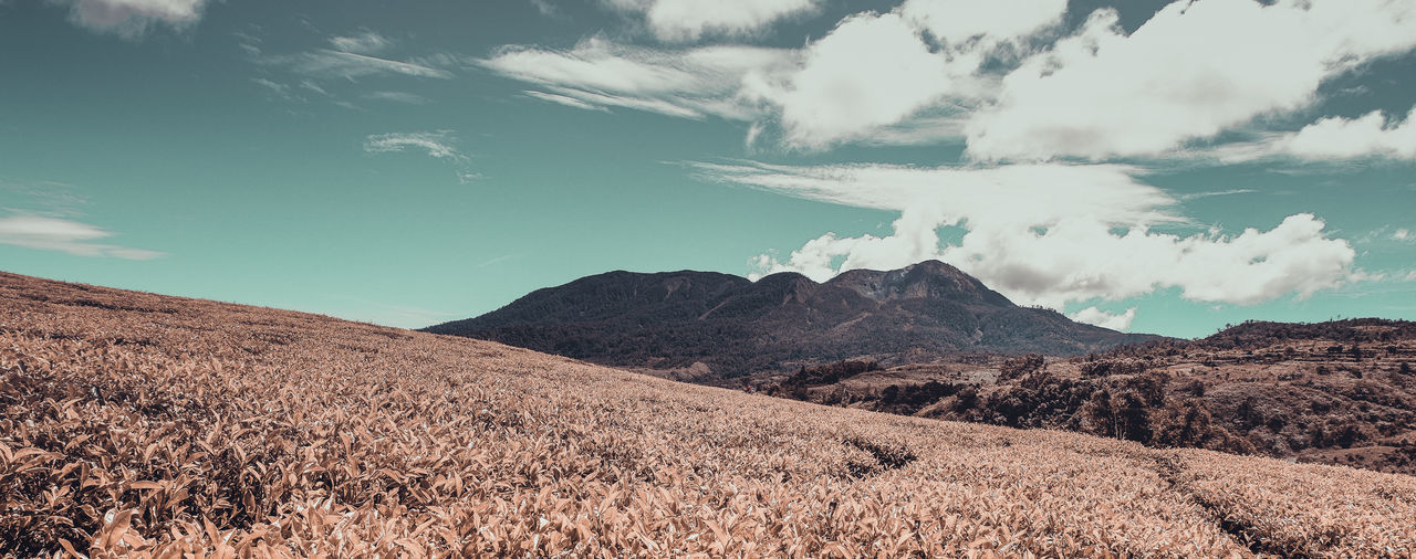 Gunuang Talang Cloud - Sky Sky Mountain Scenics - Nature Tranquility Beauty In Nature Landscape Tranquil Scene Environment Day No People Nature Non-urban Scene Land Plant Mountain Range Outdoors Remote Idyllic Field Arid Climate