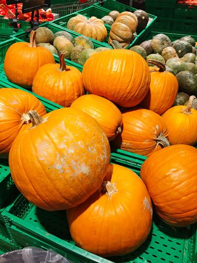 Pumpkin Vegetable Orange Color Halloween Food Freshness Autumn Squash - Vegetable Food And Drink No People Choice Market Day Agriculture Healthy Eating Gourd Outdoors Nature Close-up