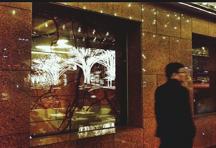 Window Reflections Illuminated Trees Lotte Hotel_seoul