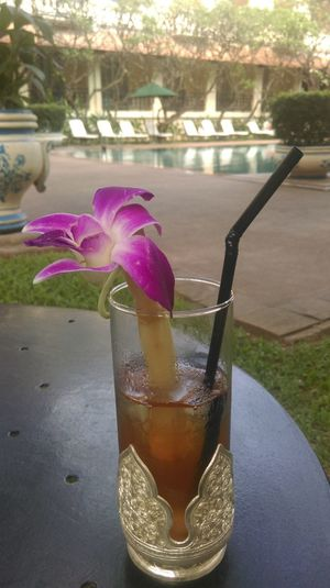 Relaxing Enjoying Life Taking Photos That's Me Pink Flower Remember Summer  Orchid