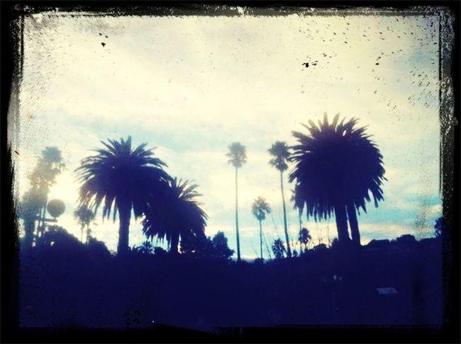 Beautiful sky ? Soaking Up The Sun Walking Around beautiful Relaxing First Eyeem Photo