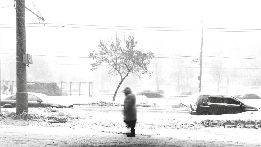 It's Cold Outside Russian Winter Winter Landscape Season Greetings Seasonal Photography Seasons Changing Snow Covered Snow Day Street Photography Lonely Person Capture The Moment Random People Random Shot Black & White B&w Street Photography Minimalistic Black And White See The World Through My Eyes Moscow Russia Black And White Photography Silhouette Lonely Tree Minimal Photography Still Life The Street Photographer - 2017 EyeEm Awards Be. Ready. Black And White Friday