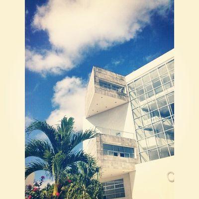 çive Cei UJAT Sky Sun GoodDay BlueSky Universidad Beautiful HotDay >.<
