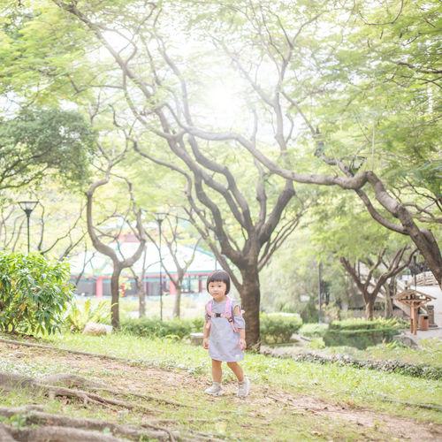 Portrait of happy boy standing by tree