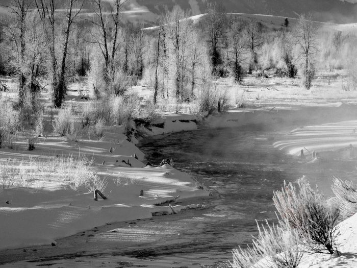Misty River Landscape near Jackson, WY Black & White Morning Mist ıce Snow Winyer Water Day Nature No People Land Full Frame Outdoors Motion Beauty In Nature Non-urban Scene Backgrounds Wet Leisure Activity