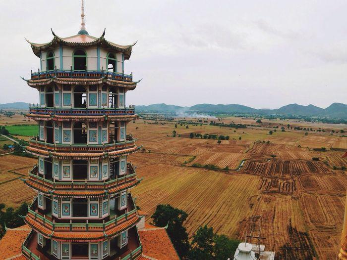 Pagoda In Field