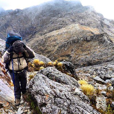 En la vía hacia el pico Bolivar en el sector Cresta de Gallo en el parque Nacional Sierra Nevada en Mérida Venezuela Venezuelatravel Venezuelaes Gotravelfree Gf_venezuela Gf_colombia IG_GRANCARACAS IgersVenezuela Insta_ve Instapro_ve IG_Venezuela InstaLoveVenezuela Instafoto_ve Instaland_ve Destinomaschevere Tequierovenezuela Thisisvenezuela Icu_venezuela Ig_lara Igworldclub Ig_tachira IG_Panama
