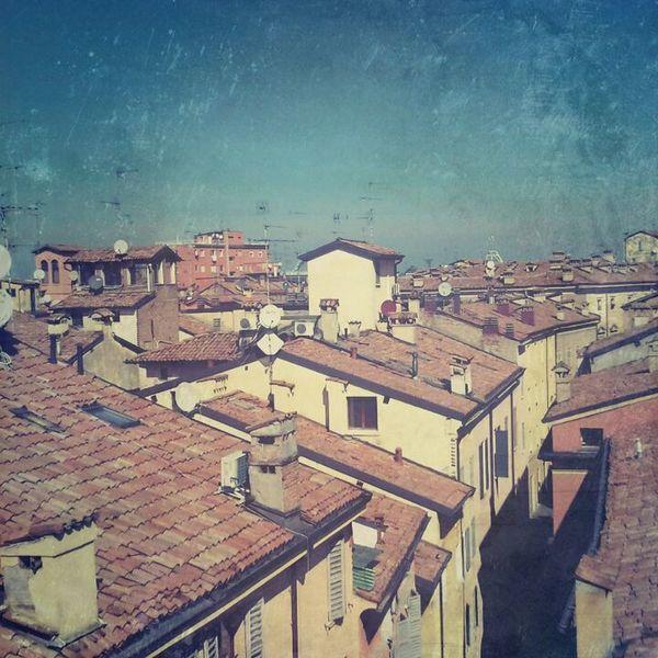 Tetto Tetti  Roof Structure Rooftop Scenery Vista Point Vista Dall'alto Citta City View