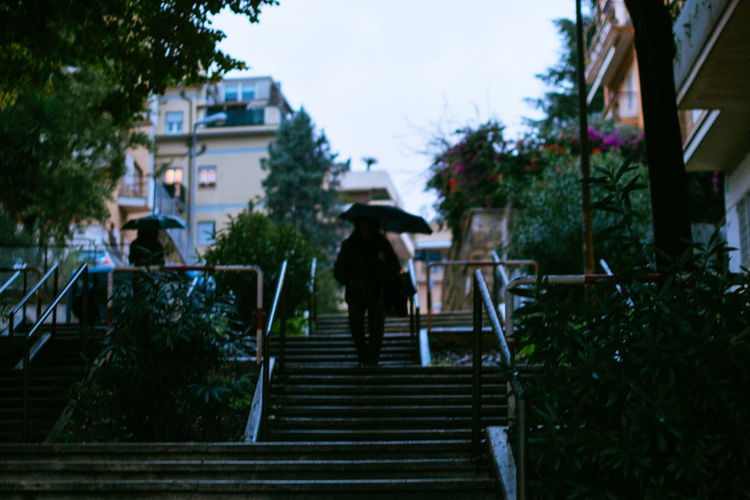 City Life Cold Day Growth Low Angle View Moving Up Outdoors Person Railing Rain Staircase Stairs Steps Steps And Staircases The Way Forward