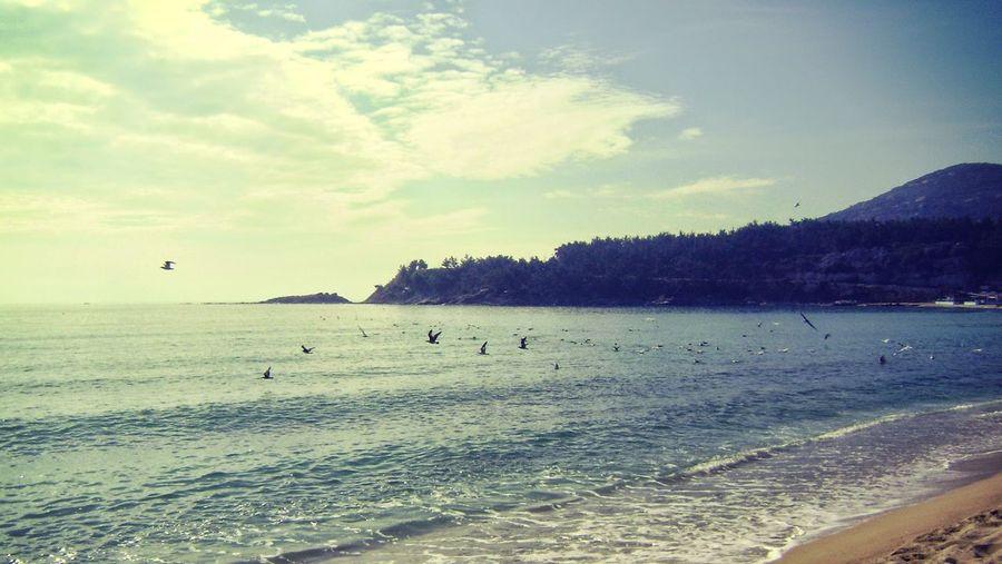 Beach near Kavala Greece Vista @ Kavala In Greece  Life Is A Beach