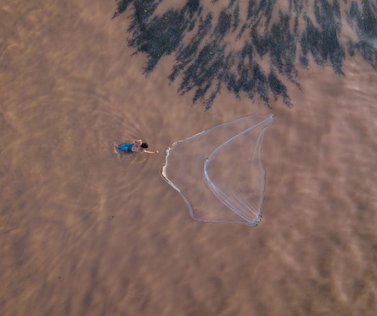 Local Fisherman Launching His Net In The Ping River Chiang Mai River Fishing Animal Themes Animal Wildlife Animals In The Wild Beach Beauty In Nature Close-up Day Fisherman High Angle View Nature Net No People One Animal Outdoors Ping River  Sand Sea Sea Life Swimming Water