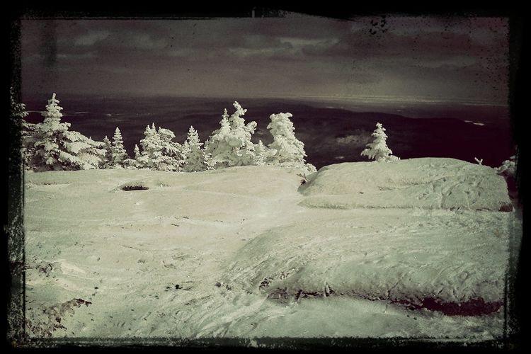 Mont Lyon USA