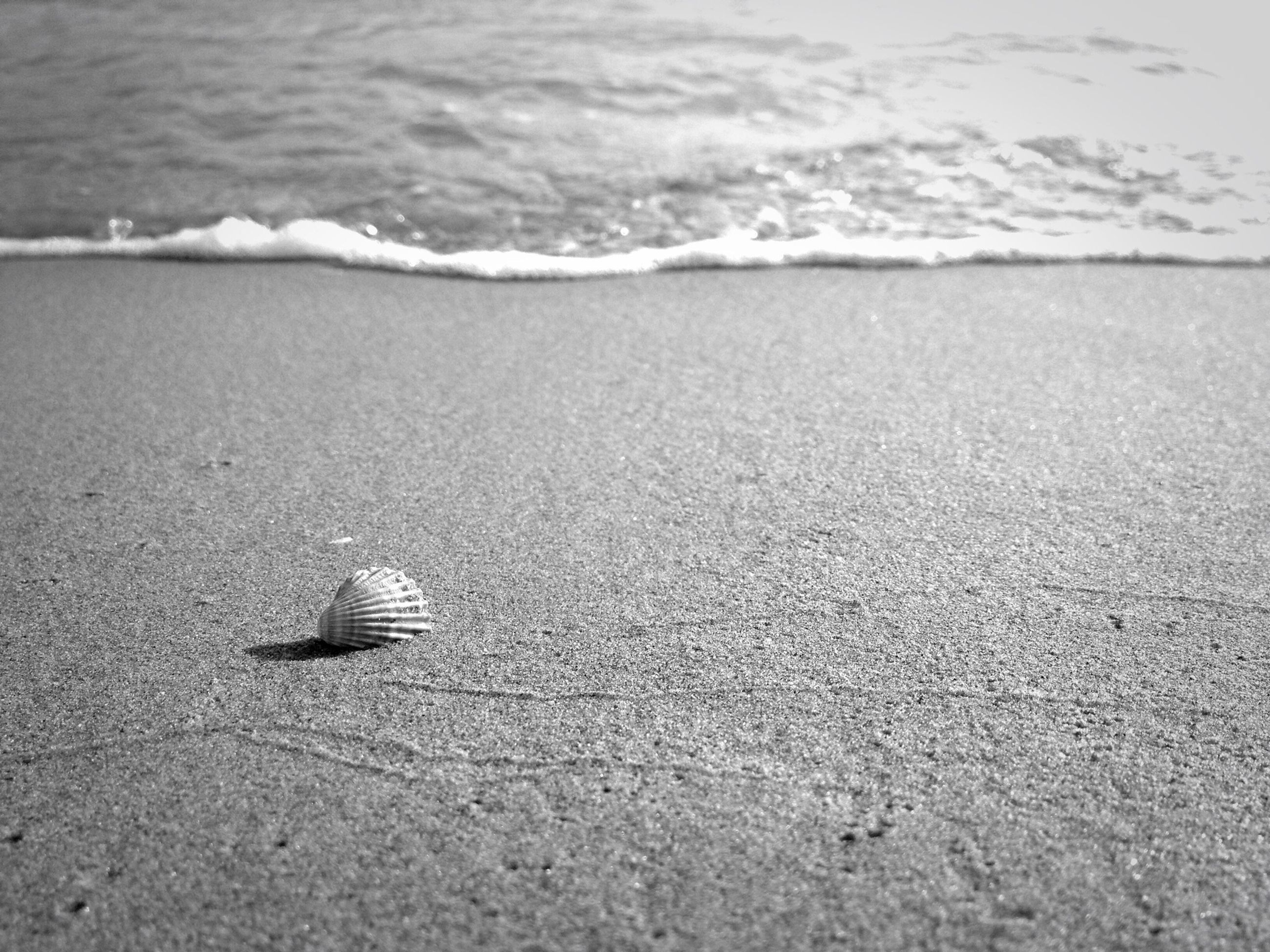 beach, sand, sea, water, shore, tranquility, nature, horizon over water, tranquil scene, beauty in nature, day, wave, outdoors, scenics, high angle view, no people, footprint, coastline, surf, sandy