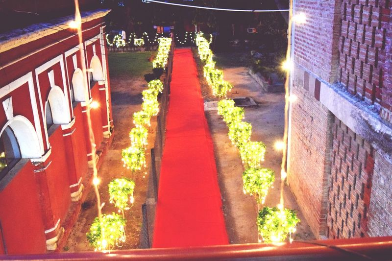 Light Nightshot Red Carpet