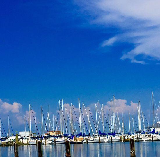 Yahtclub Sailing Sailboat Lakeshore Nautical Vessel Blue Water Lake Pontchartrain