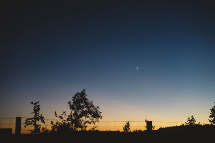 sliver of a moon Sky Tree Plant Moon Silhouette Beauty In Nature Scenics - Nature Tranquility Crescent Tranquil Scene Night Nature No People Space Copy Space Clear Sky Half Moon Blue Dusk Low Angle View Astronomy Outdoors Dark
