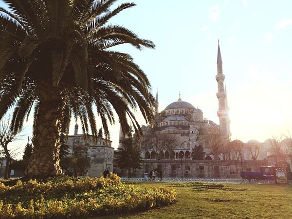 Sultanahmet Mosque Ancient Architecture Oriental Istanbul Open Edit