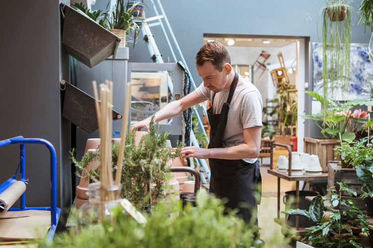 Young man looking at potted plants