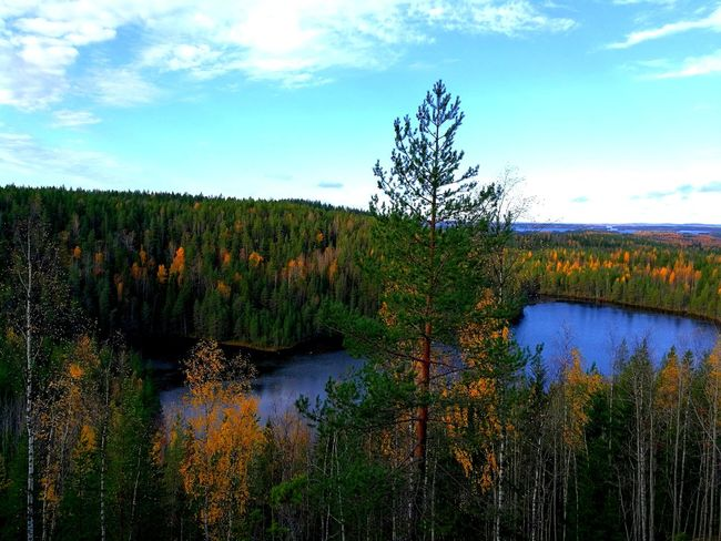 Nature Beauty In Nature Scenics Lake Water Outdoors Tree Day No People Sky Tranquility Landscape Landscape Photography Backgrounds Photography Colours Of Autumn Autumn🍁🍁🍁 Autumn Nature Photography Finland Perspectives On Nature Discovering Nature Photo Eye4photography  Tranquil Scene