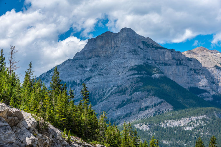 Mountain Cloud - Sky Beauty In Nature Scenics - Nature Sky Rock Environment Plant Tranquil Scene Landscape Nature Mountain Range Tree Tranquility Non-urban Scene Idyllic No People Day Rock - Object Remote Outdoors Mountain Peak Formation Coniferous Tree Pine Woodland