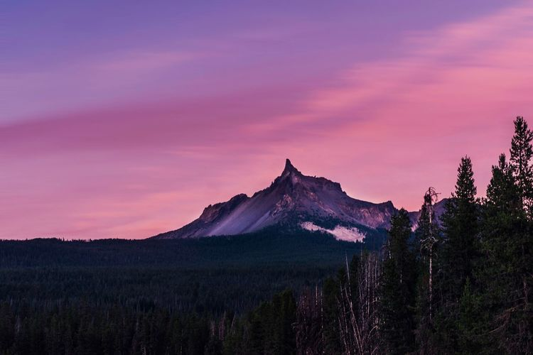 Hiking Adventure Vacations Travel Destinations Oregon Hikingadventures Sky Scenics - Nature Beauty In Nature Plant Mountain Tree Nature Sunset Landscape Travel Destinations Pink Color Environment Tranquil Scene